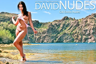 D-N – 2011-01-25 – Cali – Exotic Nudes (47) 3744×5616