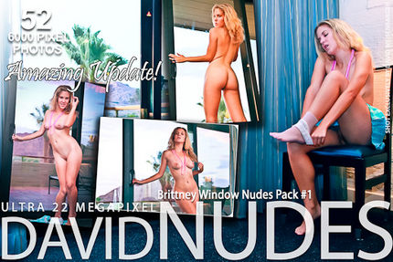 D-N – 2011-05-18 – Brittney – Window Nudes Pack 1 (52) 3744×5616