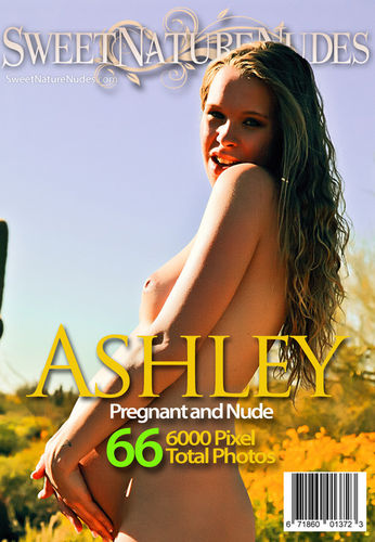 SNN – 2013-03-02 – Ashley Haven – Pregnant and Nude (66) 3744×5616